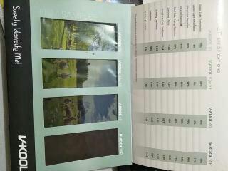 Spesifikasi kaca film